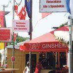 la altrheinfest 08